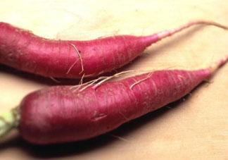 红萝卜不能和什么一起吃 红萝卜和什么相克