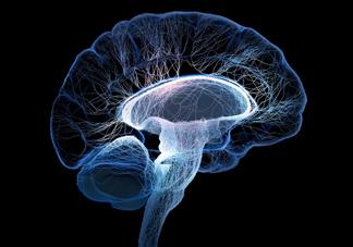 脑死亡和人死亡有什么区别?脑死亡人还有救吗