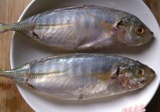 咸鱼长毛还能吃吗?怎样辨别咸鱼是否变质