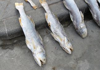咸鱼真的是一类致癌物?咸鱼怎么做好吃