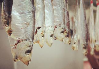 腌咸鱼盐和鱼的比例是多少?咸鱼一般腌多久才能晒