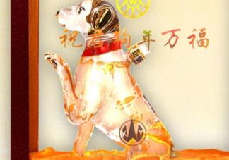 五粮液52度生肖狗年礼盒装多少钱?什么味道?