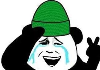 做头发表情包 我去做头发了绿帽表情包
