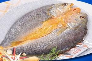 大黄鱼为什么那么贵 物依稀为贵