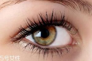假睫毛有几种梗?3种梗不同的效果