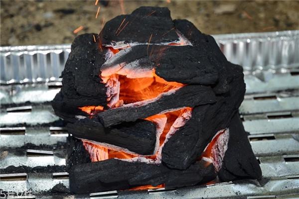 怎么用木炭生火 木炭生火技巧
