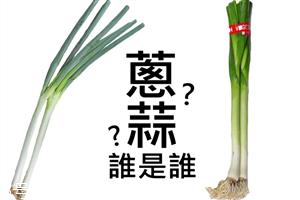 葱和蒜苗的区别 葱蒜怎么区分