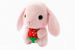 AMUSE玩偶是哪个国家的牌子?东京御宅族文化商品
