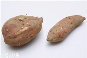 家用烤箱烤红薯怎么烤 烤箱烤红薯小技巧