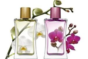 香水时间长了会变质吗?时间越久味道越好