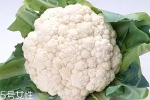 花椰菜吃的是什么部位?花苞部位最营养