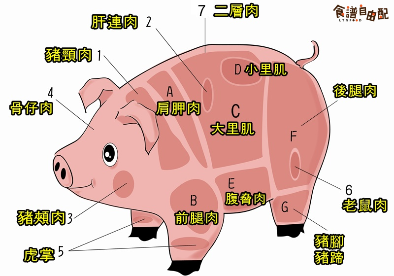 猪各部位肉的名称图片全解