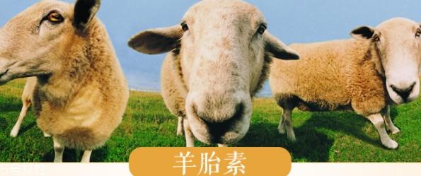 羊胎素和透明质酸哪个好?