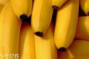 仙人蕉多少钱一斤?