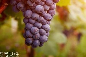 葡萄籽会影响月经吗?吃法正确就不会