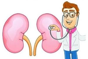 怎样预防肾病的发生 护肾饮食10要点