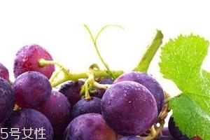 葡萄籽能和感冒药一起吃吗?