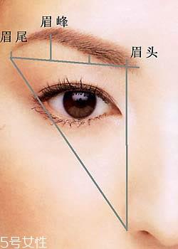 不同脸型的眉毛设计图片