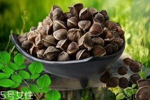 辣木籽能治口臭吗?口臭吃辣木籽好吗?