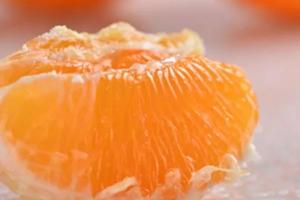 青见柑橘 青见柑橘多少钱一斤?青见的功效作用