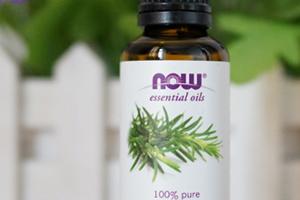 植物医生迷迭香精油的功效与作用图片