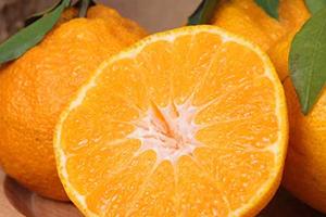 丑橘上火吗?丑橘是上火还是下火