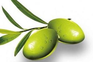青榄孕妇可以吃吗 产妇可以吃橄榄吗