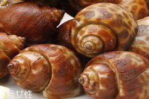 花螺要煮多久才熟 花螺怎么煮好吃