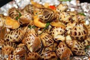 香螺多少钱一斤 香螺的选购技巧