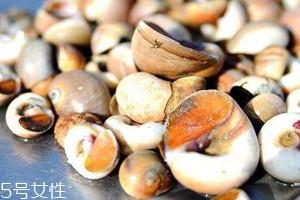 香螺哪些部位不能吃 哪些人不能吃香螺