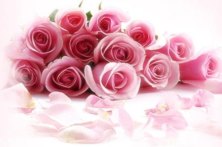 jm玫瑰防晒喷雾和jm珍珠防晒喷雾哪个好?