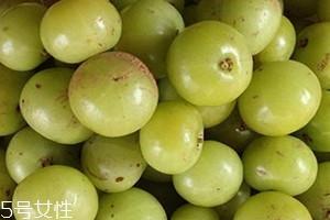 油柑孕妇可以吃吗 油柑怎么吃