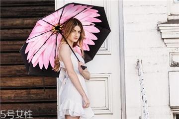 太阳伞一般多少钱?太阳伞市场价格