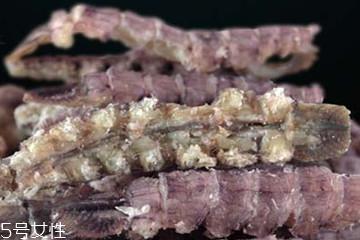 皮皮虾干怎么做好吃 皮皮虾干的吃法