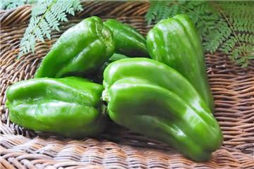 青椒怎么炒不变色 青椒怎么炒不会变黄