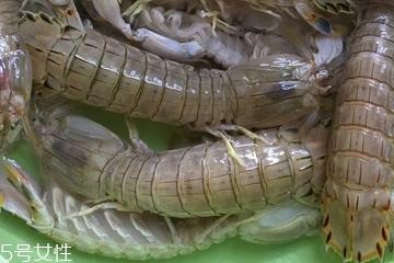 皮皮虾皮能不能吃?皮皮虾可以连皮吃吗?