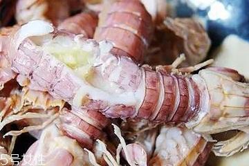 皮皮虾分公母吗?皮皮虾怎么分公母?