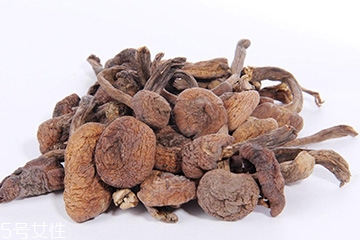 榛蘑的宜忌人群 哪些人适合吃榛蘑?