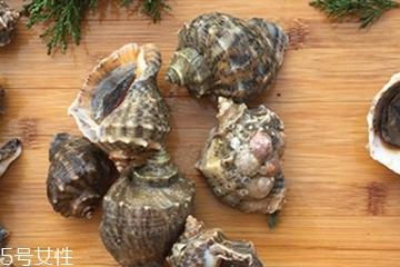 海螺会中毒吗?吃海螺中毒多久会缓解?