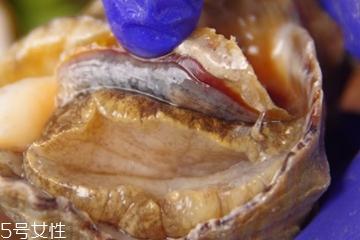 海螺可以隔夜吃吗?海螺煮熟隔夜能吃吗?