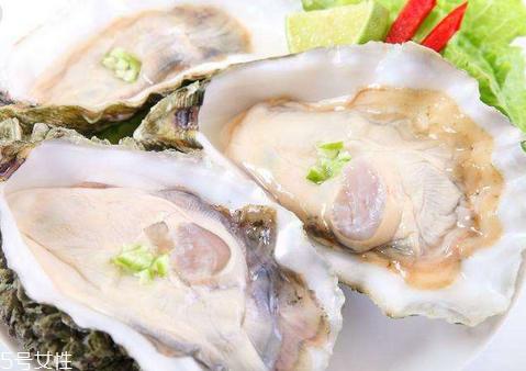 孕妇能吃牡蛎吗?中期图片