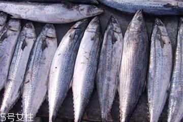 鲅鱼和豆腐能一起吃吗 促进蛋白吸收