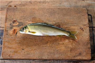 香鱼是什么鱼 5种香鱼的做法