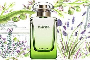 中性调香水适合什么季节 让人放松的暖香