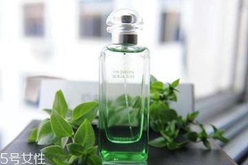 青香型香水适合什么年龄 沉稳与活力兼具