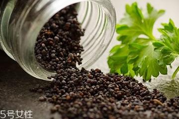 罂粟籽 罂粟籽的功效和作用
