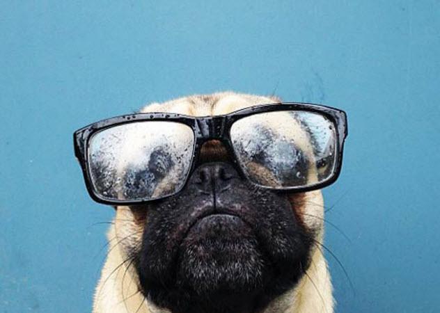 戴眼镜好看吗 眼镜族的5大困扰