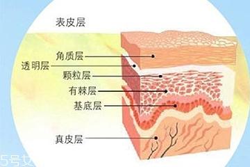 油皮敏感肌怎么去角质 手把手教你去角质