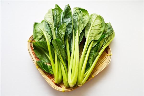 小松菜是什么菜 小松菜怎么保存与挑选