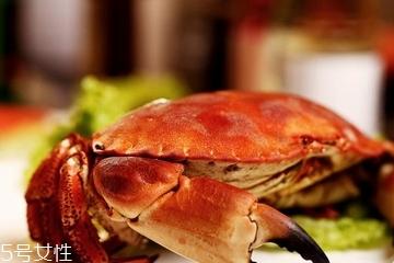 面包蟹怎么挑 买面包蟹必看